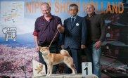 Jaklho Shiba Inu - Nippo Show Holland